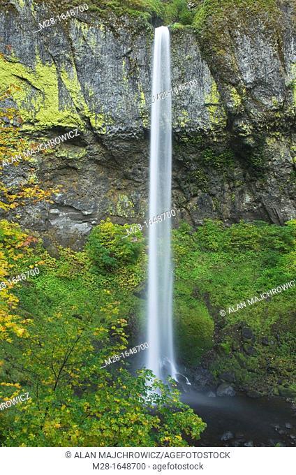 Elowah Falls, Columbia River Gorge National Scenic Area Oregon