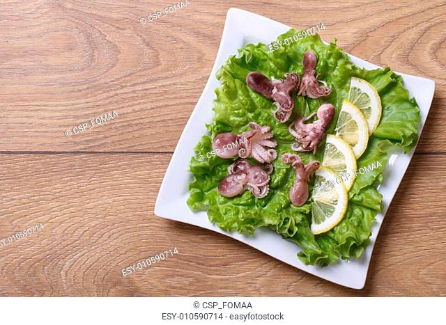 small octopus with lemon slices on lettuce. top view