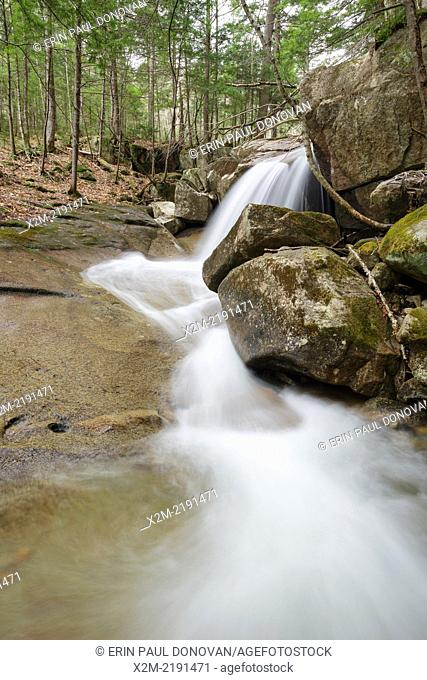 Stony Brook in the White Mountains, New Hampshire USA during the spring months. This brook is on the side of Mount Tremont Trail