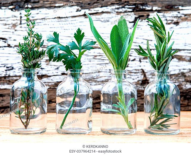 Bottle of essential oil with herbs rosemary, sage,parsley and thyme set up on old wooden background