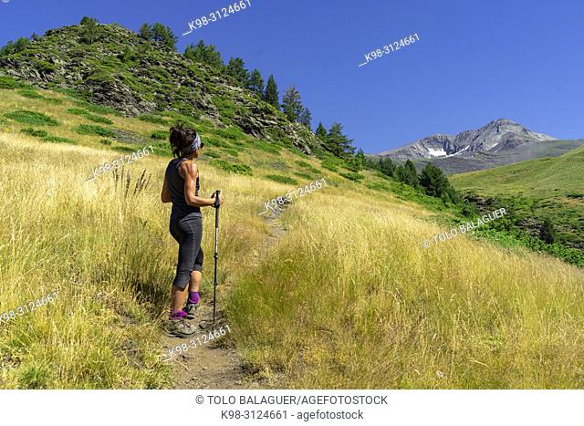 Señal de Biadós, valle de Cinqueta de la Pez , parque natural Posets-Maladeta, Huesca, cordillera de los Pirineos, Spain
