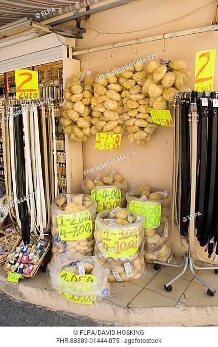 marine sponges for sale on the greek island of crete