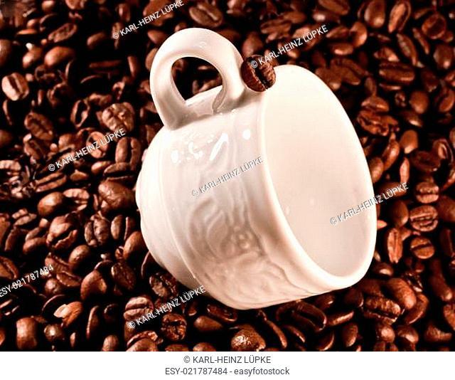 Hau der Kaffeehöhe