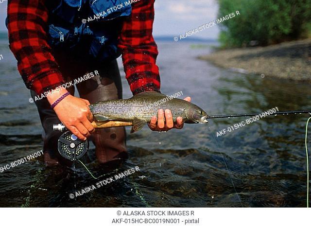 Fisherman Holding Arctic Grayling Southwest Alaska