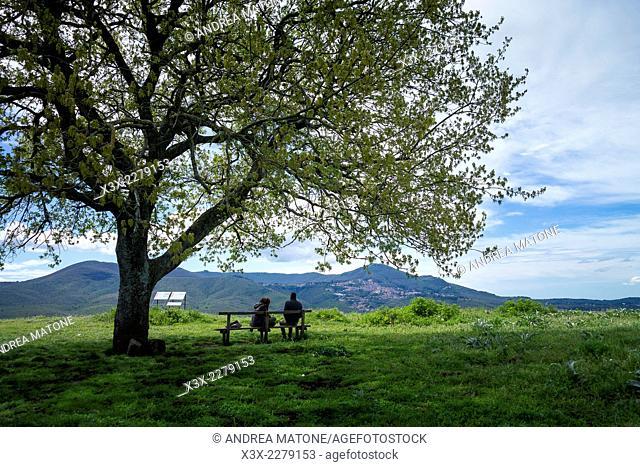 Tusculum park. Castelli romani, Italy