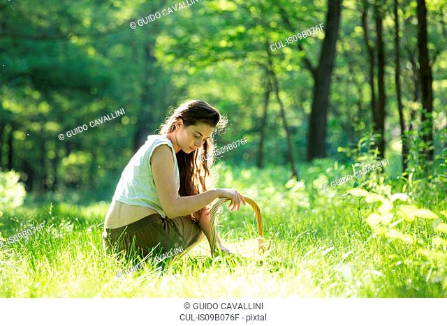 Young woman crouching to forage wild herbs in forest, Vogogna, Verbania, Piemonte, Italy