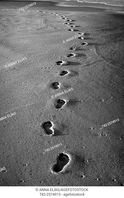 footprints on sand at the beach in black and white