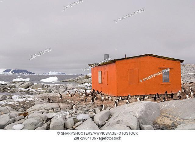 Antarctica, Antarctic Peninsula, Lemaire Channel, Petermann Island, Emergency hut