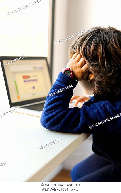 Little boy looking at laptop