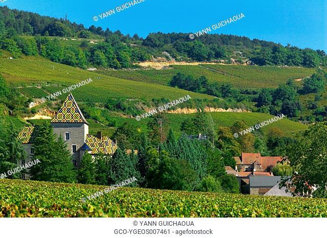 Santenay, Burgundy, France