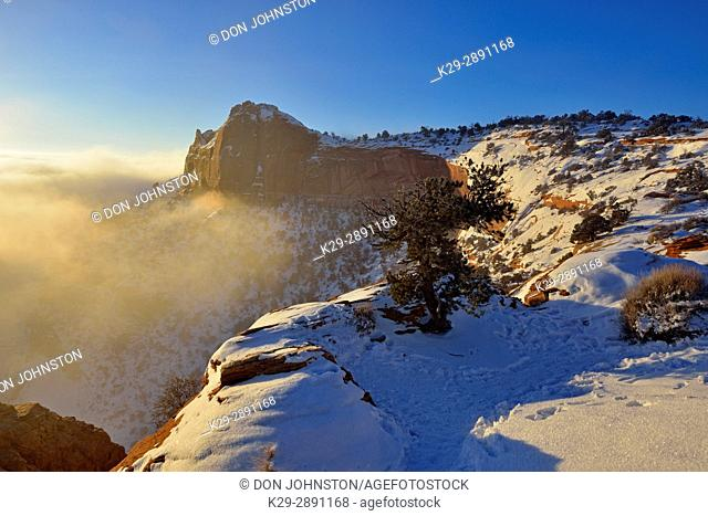 The canyon rim near Mesa Arch in winter, with fog, Canyonlands National Park, Utah, USA