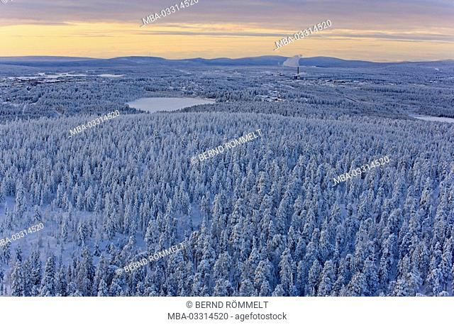 Sweden, Swedish Lapland, Gällivare, winter scenery, wood