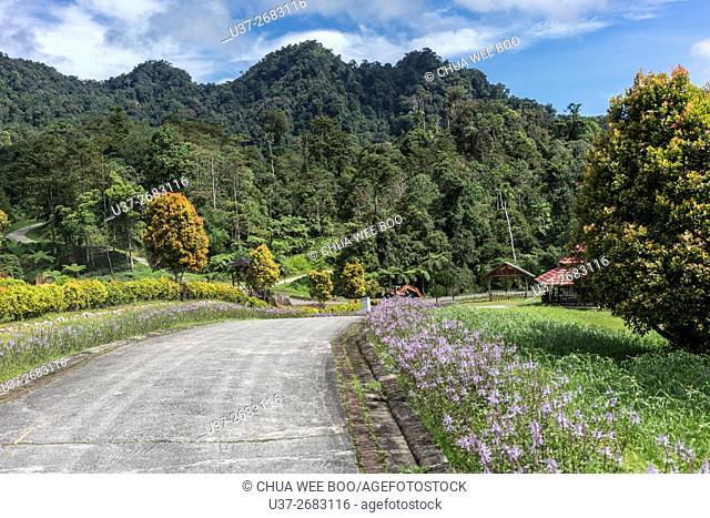 Kuching- Borneo Highland road, Sarawak, Malaysia