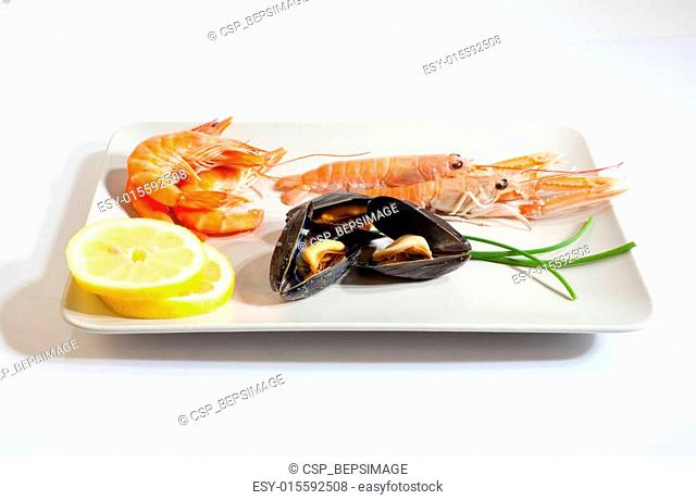 Crustacean and mussels