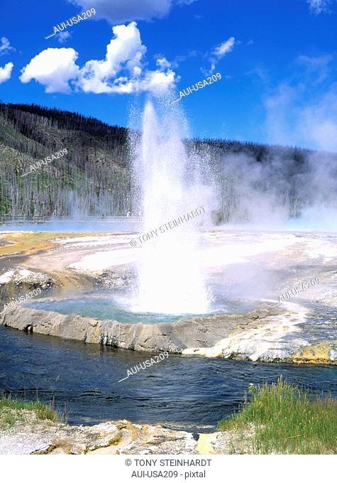 USA - National Park - Yellowstone