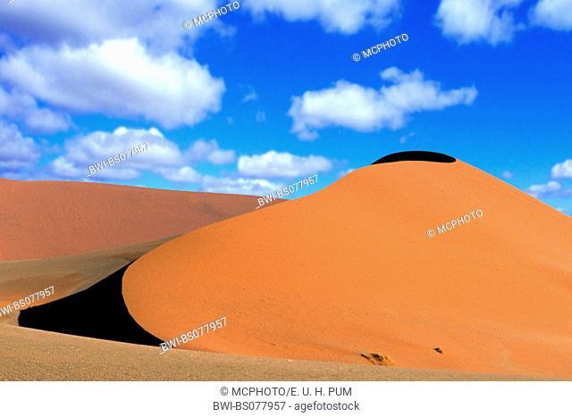 sand dunes in Sossusvlei, Namibia, Namib-Naukluft NP
