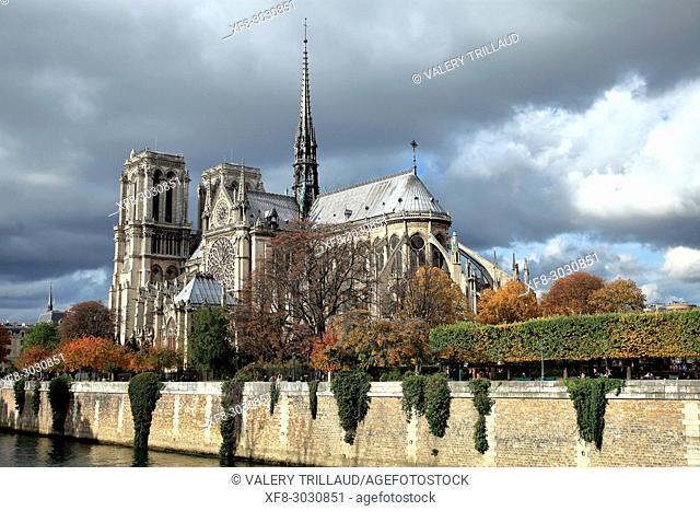 Notre Dame Cathedral, Île Saint Louis, Paris, Île de France, 75, France