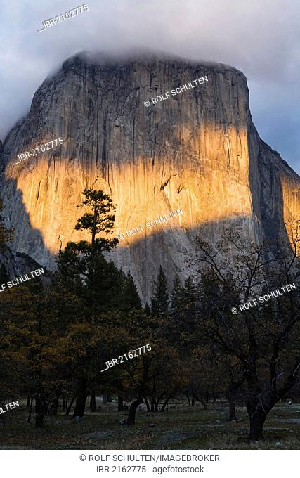 Evening sunlight shines on El Capitan, a granite monolith with up to 1000 metres high cliffs in Yosemite Valley, Yosemite National Park, Yosemite, California