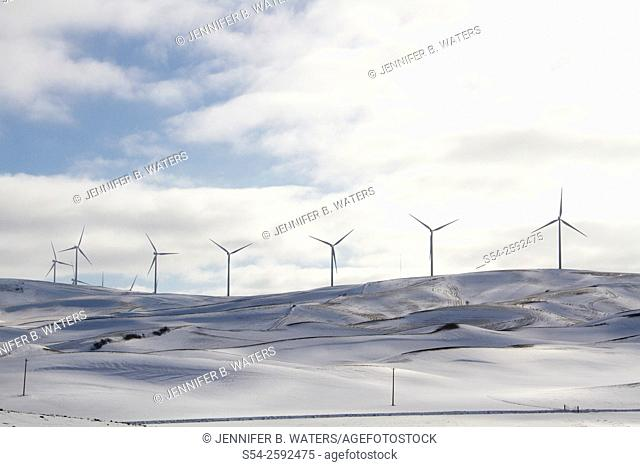 A wind farm in Whitman County, Washington, USA