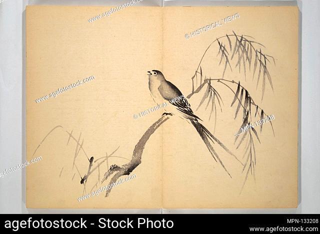 Okyo. Artist: After Maruyama Okyo (Japanese, 1733-1795); Period: Edo period (1615-1868); Date: 1850; Culture: Japan; Medium: Woodblock printed book (orihon