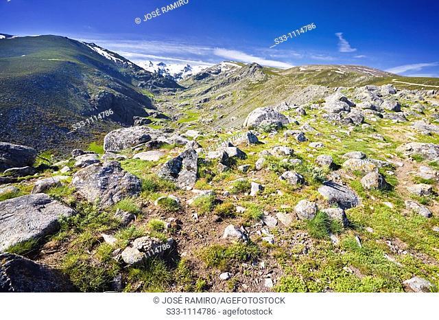 Garganta de Galín Gómez, Sierra de Gredos, Avila province, Castilla-Leon, Spain