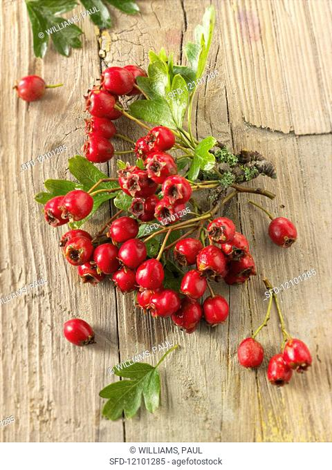 Freshly picked hawthorn berries on a wooden surface