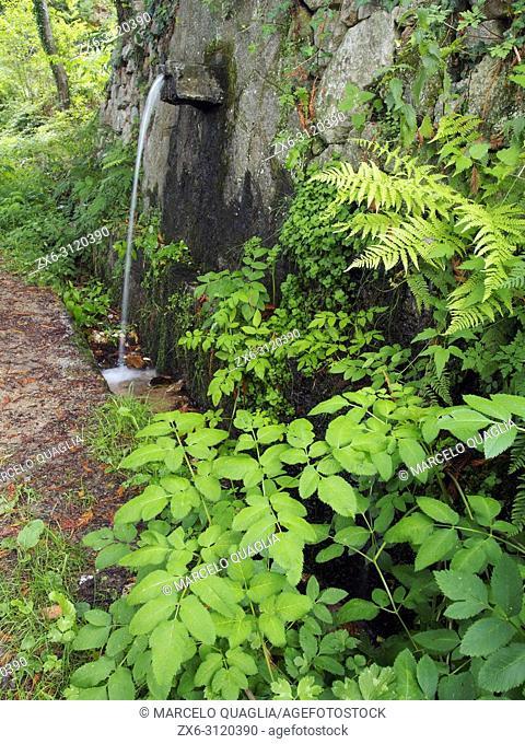 El Vilar fountain. Arbucies village countryside. Montseny Natural Park. Barcelona province, Catalonia, Spain