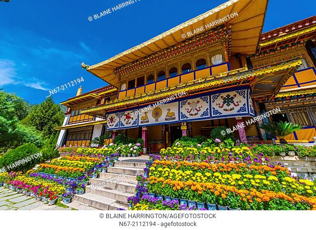 Norbulingka Palace, Lhasa, Tibet (Xizang, China). The palace served as the traditional summer residence of the successive Dalai Lamas from the 1780s up until...