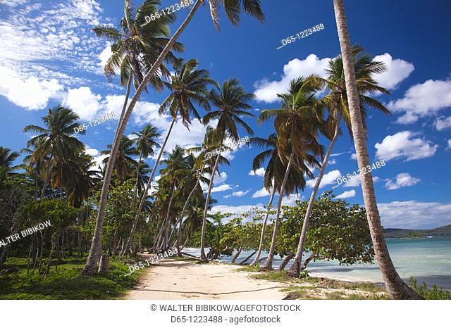 Dominican Republic, Samana Peninsula, Las Galeras, Playa Rincon beach
