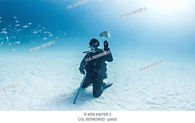 Portrait of scuba diver, underwater view