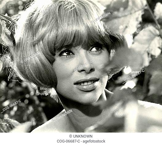 The actress Mireille Darc in a scene from the film Monte Carlo or Bust! (Those Daring Young Men in Their Jaunty jalopies), 1969
