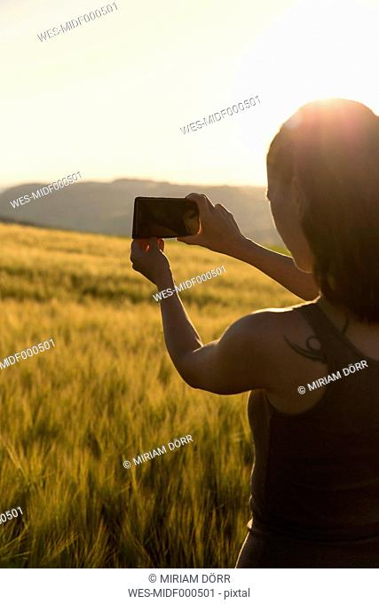 Germany, woman standing in front of a field at sunrise taking a picture with her smartphone