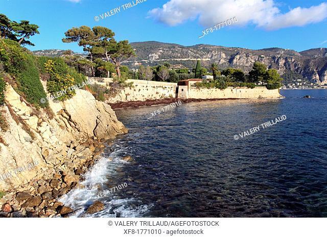 The Cap Ferrat, Alpes-Maritimes, French riviera, Provence-Alpes-Côte d'Azur, France