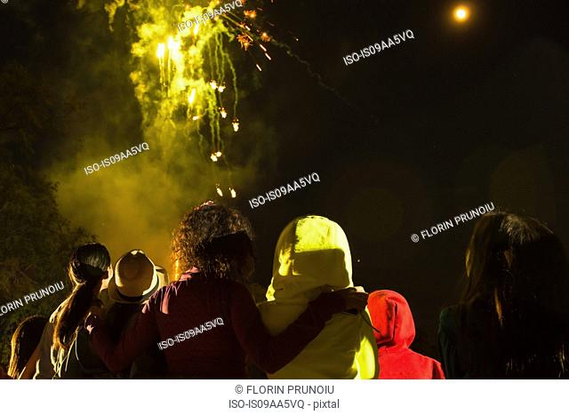 Group of people watching firework display