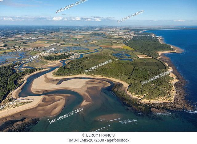 France, Vendee, Talmont Saint Hilaire, le Havre du Payre, Veillon beach and la Guittière marshes (aerial view)