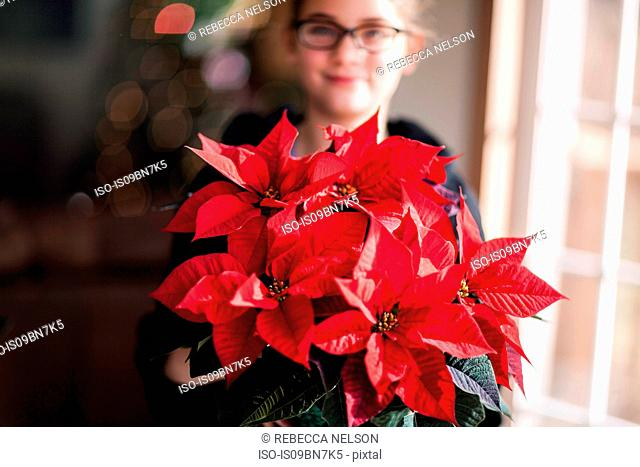 Girl holding christmas poinsettia in living room, portrait