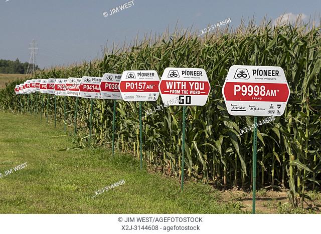 Galien, Michigan - Varieties of corn growing from seeds produced by Pioneer, a DuPont company. Nearly all corn grown in the United States is genetically...