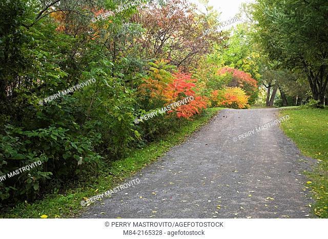 Gravel road in autumn, Quebec, Canada