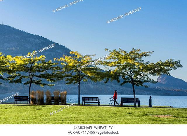 Person using a walker for stroll in Okanagan Lake Park, Penticton, British Columbia, Canada