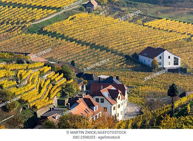 The village Spitz in the Wachau. The Wachau is a famous vineyard and listed as Wachau Cultural Landscape as UNESCO World Heritage