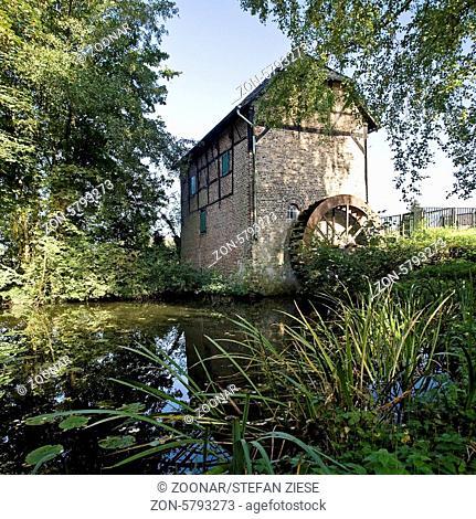 Die obere Wassermuehle gehoert, genauso wie die untere, bewohnte, Wassermuehle, zur Burganlage Schermbeck. Das ehemaliges Wasserschloss Schermbeck wurde als...