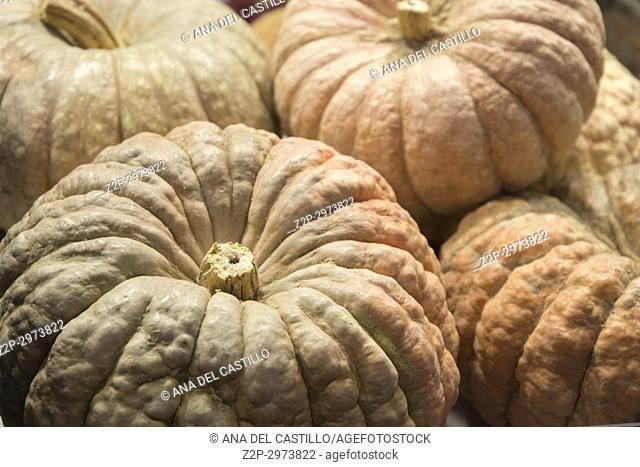 Pumpkin market, Spain