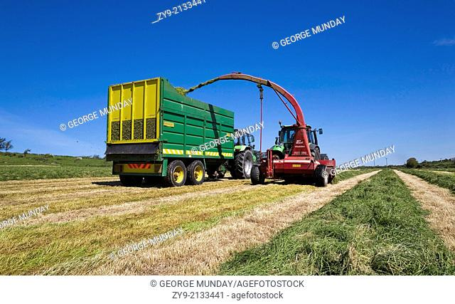 Summer Silage Cut, Near Bunmahon, County Waterford, Ireland