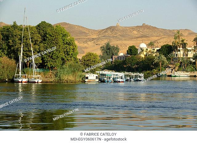 Felouques and motorboats lying close the Elephantine Island - In the background the botanical garden of the Kitchener Island