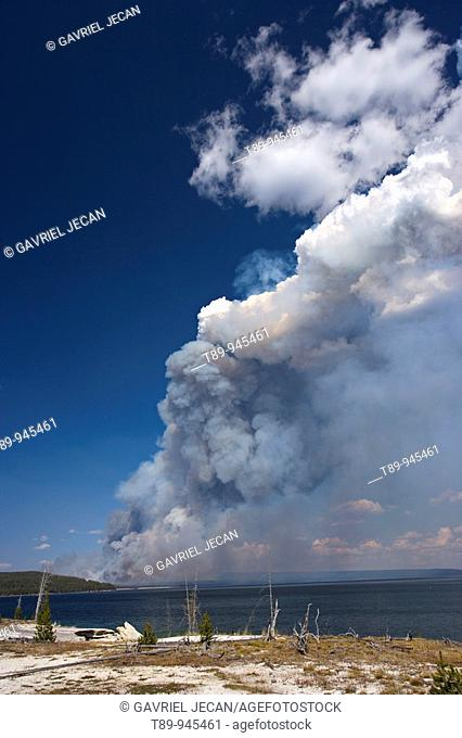 Natural Forest fires in Yellowstone National Park