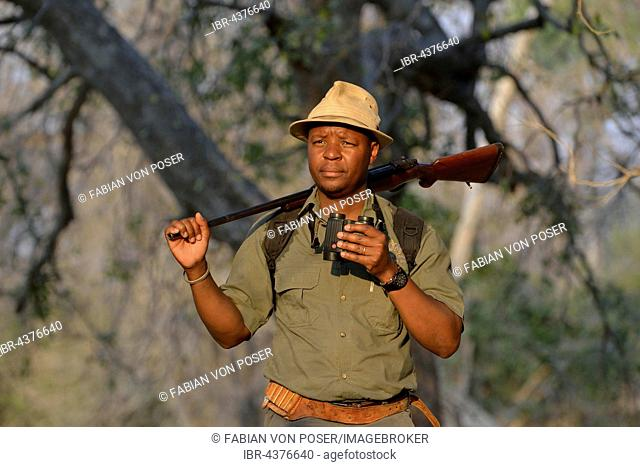 Guide with binoculars and rifle on a walking safari, Mana Pools National Park, Mashonaland West Province, Zimbabwe