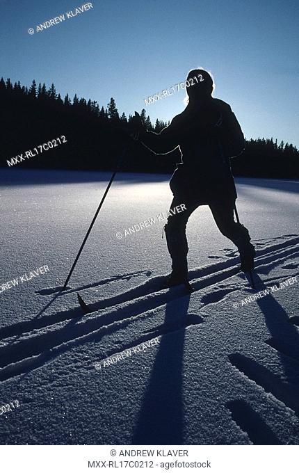 silouette of Cross country skier