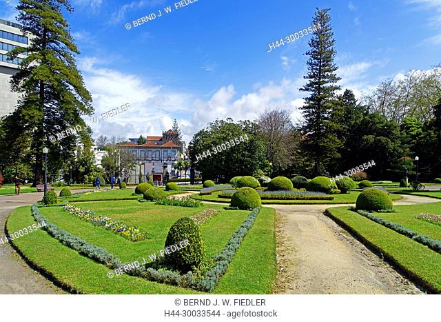 Jardim Do Palacio Do Cristal, Bäume