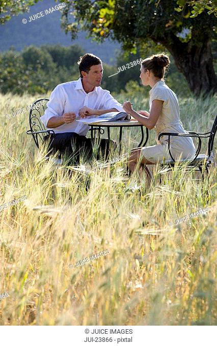 Business people meeting at table in rural field