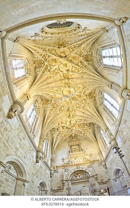 Church-Museum Convent of San Marcos, 16-17th Century Renaissance-Plateresque Style, Good of Cultural Interest, Hostal San Marcos Luxury Parador Hotel, León